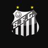 Santos Store_logo